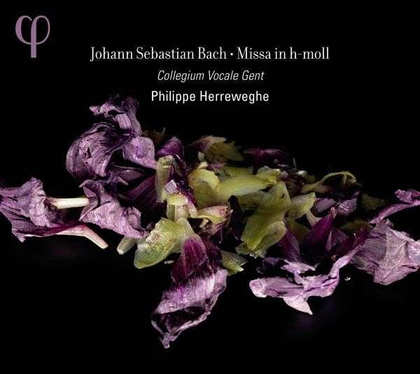 Bach b-minor mass Herreweghe 2011 Phi