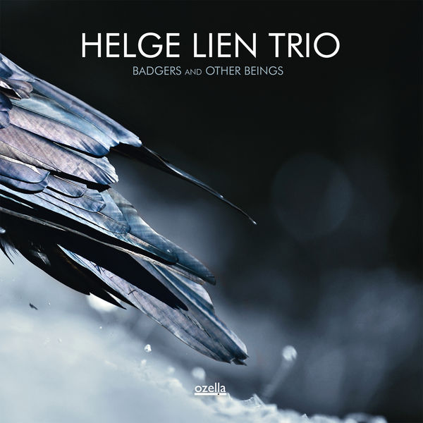 Helge Lien Trio Badgers And Other Beings Ozella Music 2014